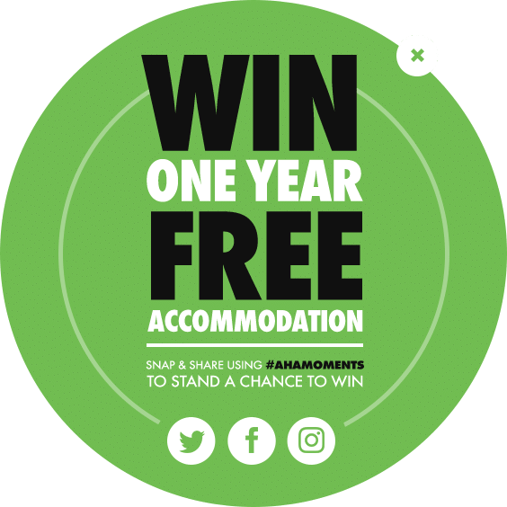 Win one year free accommodation