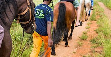 HORSE-RIDING-1-150x150