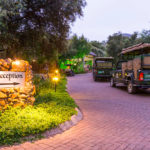 Ivory Tree Game Lodge Game Vehicles