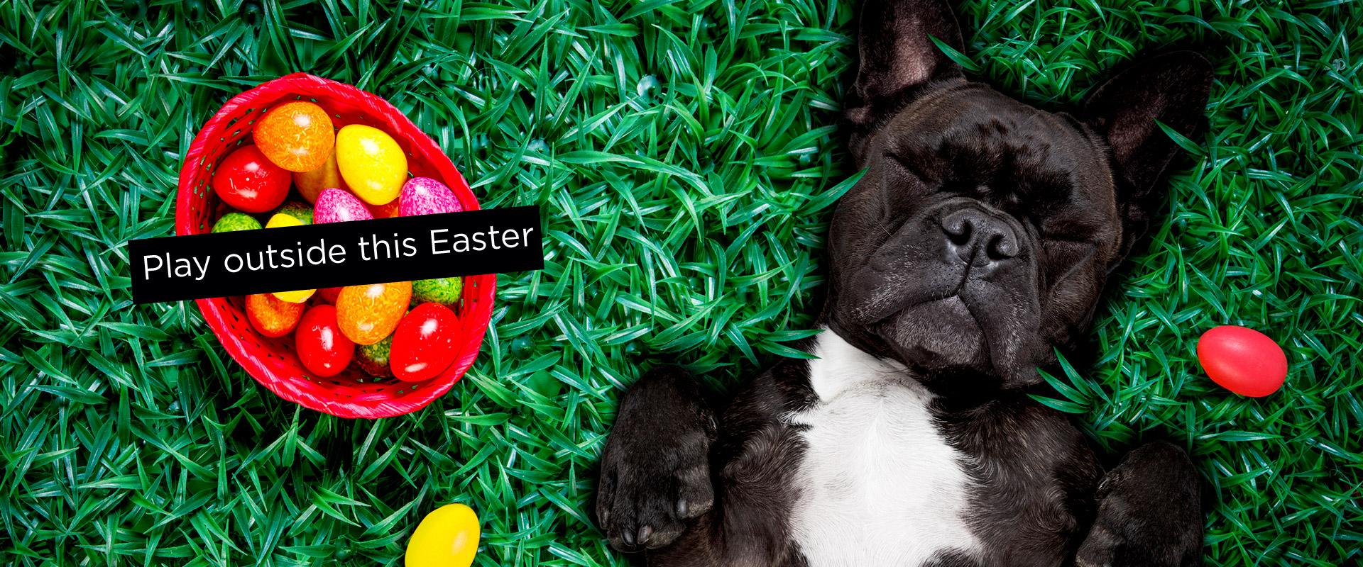 Easter-Slider-1920x800