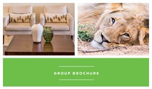 GroupBrochure-Img